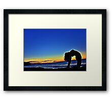 USHTRASANA @ SUNRISE Bronte Beach  Framed Print