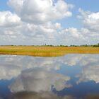 Clouds all around by rondabusscher