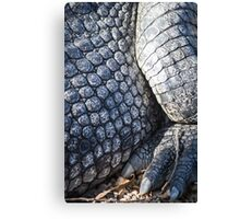 Dragons Foot Canvas Print