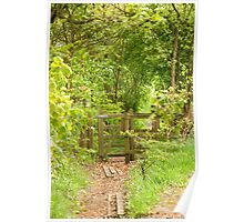 Country path in Spring Poster