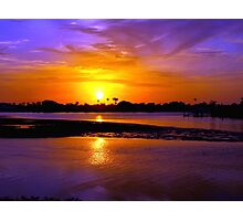 Majesty as of the Nile Photographic Print