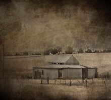 Shearing Shed by garts
