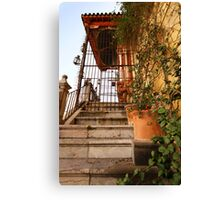 virgin mary in cordoba Canvas Print