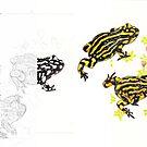 Corroboree frogs - work in progress by Laura Grogan