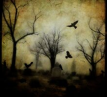 Crows Dance by gothicolors