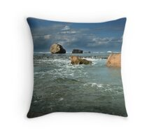 The Oceans Playthings..... Throw Pillow