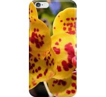 #296          Yellow & Red Spotted Orchid iPhone Case/Skin
