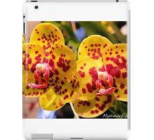 #296          Yellow & Red Spotted Orchid iPad Case/Skin