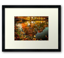 Reflection of the fall Framed Print