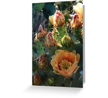 From bloom to fruit. Greeting Card