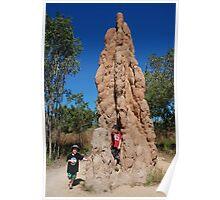Termite mound - N.T. Poster