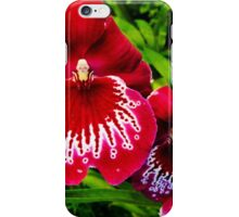 #295          Red & White Orchid iPhone Case/Skin