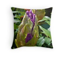Rhode Island Rhododendron - Budding © 2010 Throw Pillow