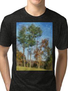 Tall Trees Against A Blue Sky Tri-blend T-Shirt