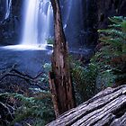 Grampians Waterfall by Simon Cross