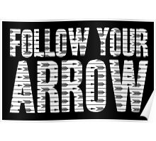 Same Trailer Different Park: Follow Your Arrow [Song Title] Poster