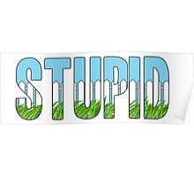 Same Trailer Different Park: Stupid [Song Title] Poster