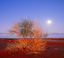 Innaminka... SA... Australia by JennyMac