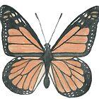 Monarch by lollipopsunday
