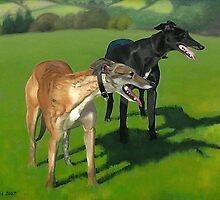 Greyhound Portrait - Oil on Canvas by Simon Groves