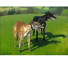 Greyhound Portrait - Oil on Canvas Photographic Print