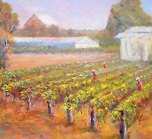 Caversham Vineyard by David Hinchliffe