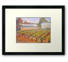 Caversham Vineyard Framed Print