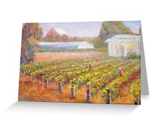 Caversham Vineyard Greeting Card