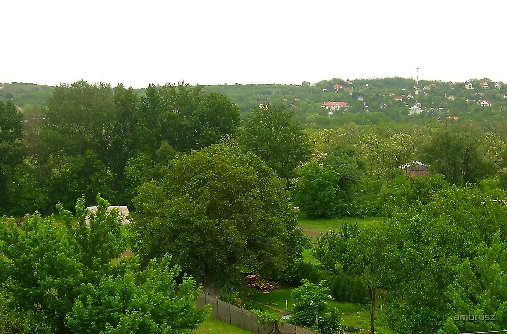 Green hillside of small town Fot in May 2010 by ambrusz