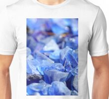 Blue Stones Unisex T-Shirt