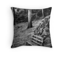 The bench at Guide Falls in monochrome Throw Pillow