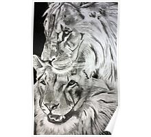 Brothers - Graphite Pencil Poster