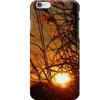 Winter Sunset in the Ornamental Grass iPhone Case/Skin