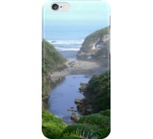 Not Another Hairpin ! iPhone Case/Skin