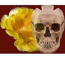 Yellow hibiscus and skull, nice couple Photographic Print