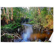 another tranquil moment,Forest Edge,Victoria Poster