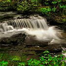 UN NAMED FALLS ALONG HORNBECKS CREEK  by MIKESANDY