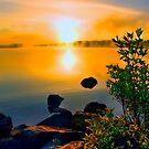 SUNRISE , NOCKAMIXON STATE PARK  by MIKESANDY