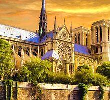 Notre Dame by Sol Noir Studios