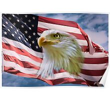 Proud American Bald Eagle Poster