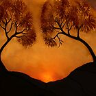 Sunset in the Jerusalem hills by RAFI TALBY