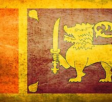 Sri Lanka - Vintage by Sol Noir Studios
