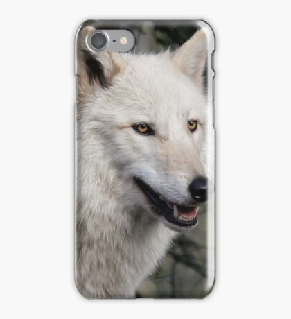 Grey Wolf Portrait iPhone Case/Skin