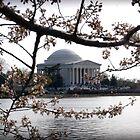 Jefferson Memorial by A Smith