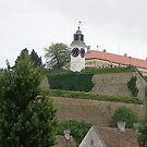 Petrovaradin fortress by Ana Belaj