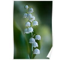 Sweet Scent of Spring Poster