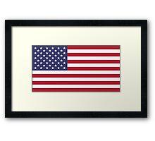 United States of America - Standard Framed Print