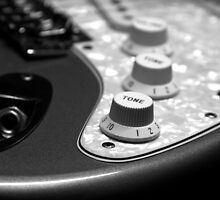 Fender Stratocaster Electronics Detail Black And White by koping