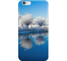 Winter White In Reflected Blue iPhone Case/Skin