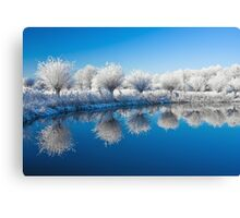 Winter White In Reflected Blue Canvas Print